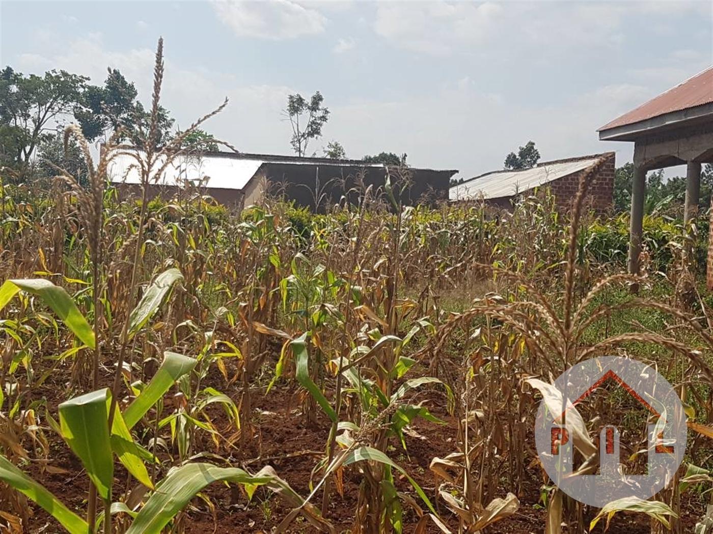 Multi Purpose Land for sale in Busiika Wakiso