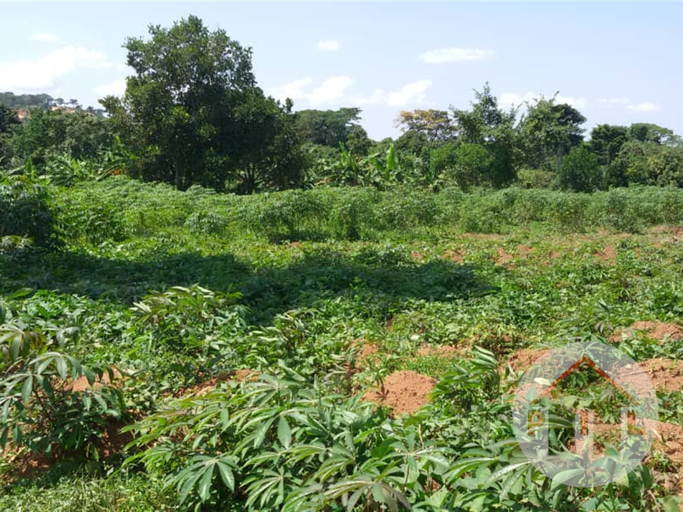 Residential Land for sale in Wampewo Wakiso