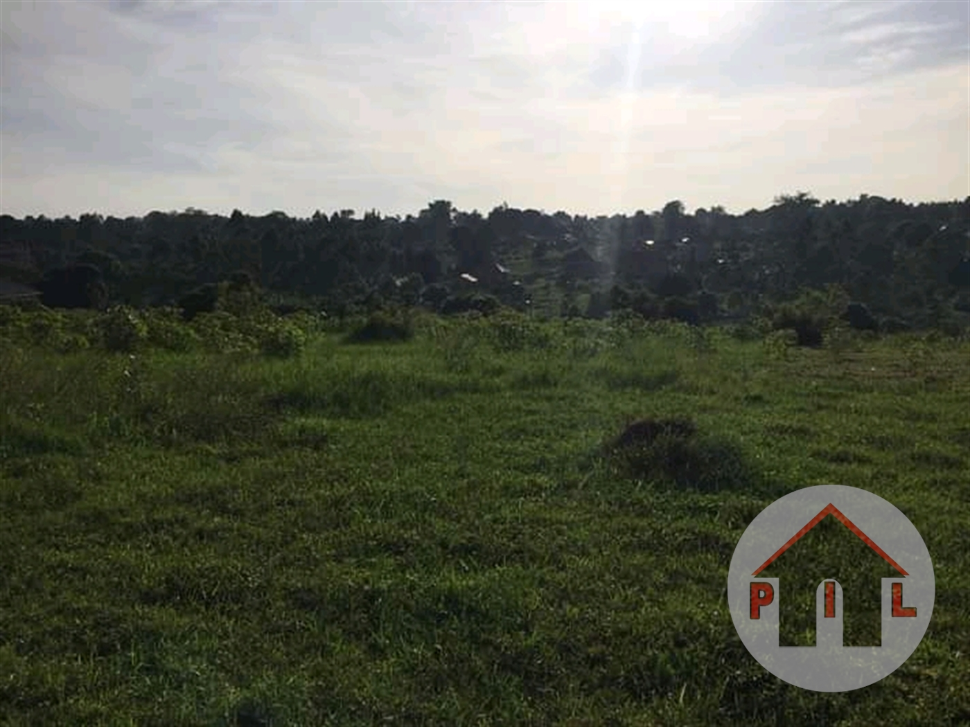Agricultural Land for sale in Mityana Mityana