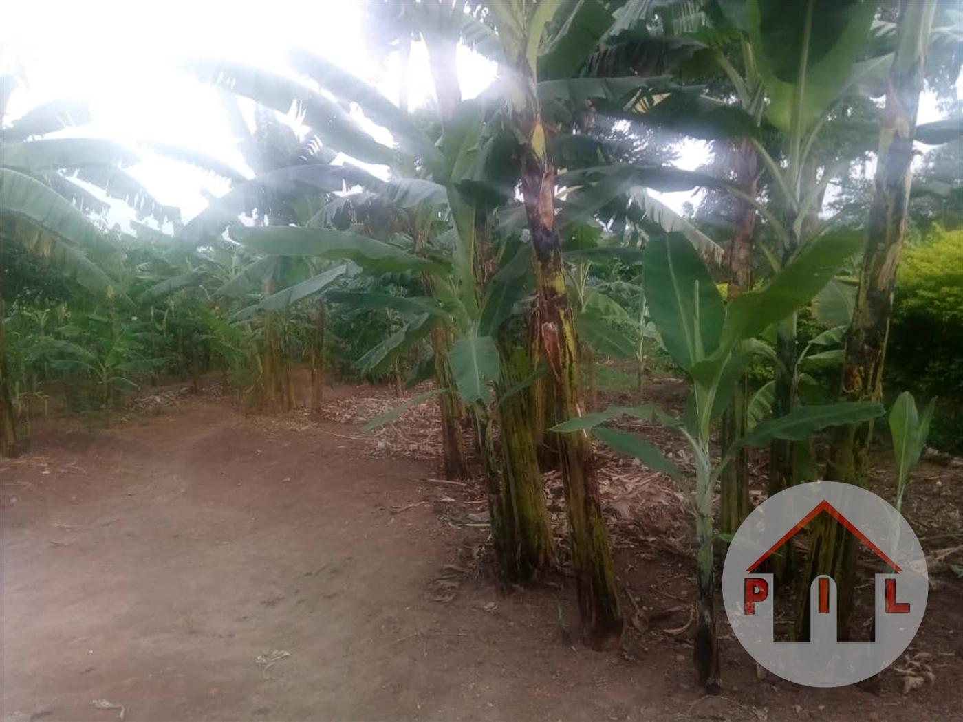 Residential Land for sale in Matuga Wakiso