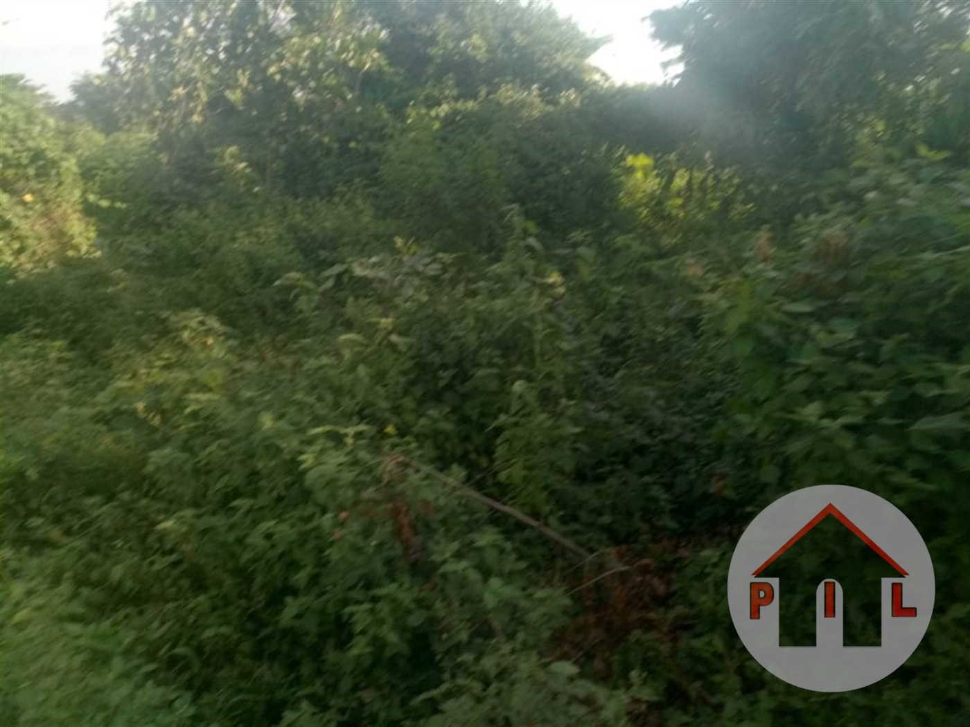 Commercial Land for sale in Kakiri Wakiso