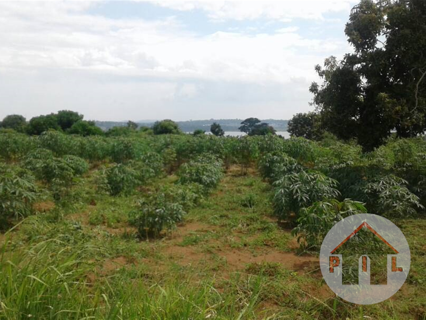 Multi Purpose Land for sale in Busukuma Mukono