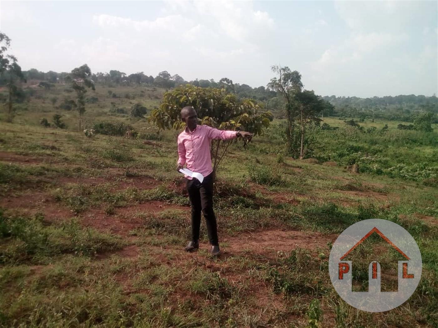 Residential Land for sale in Kakoni Wakiso