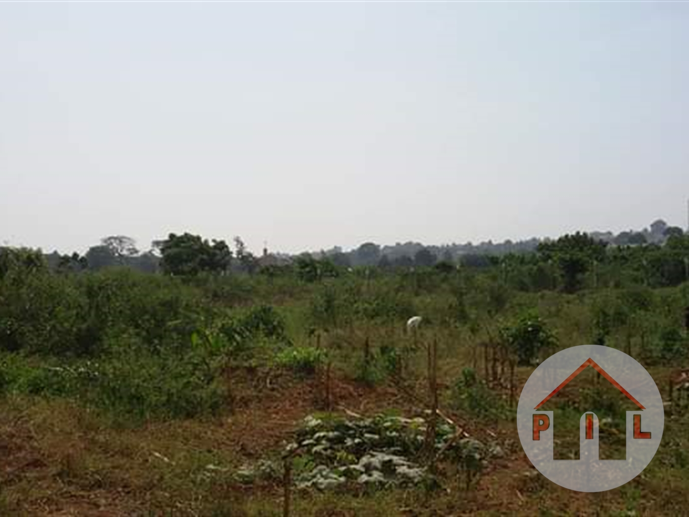 Residential Land for sale in Jungo Wakiso