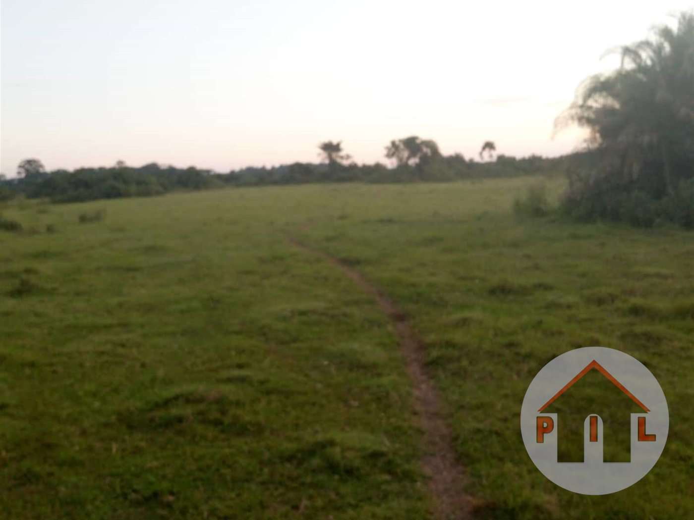 Agricultural Land for sale in Mukoko Masaka