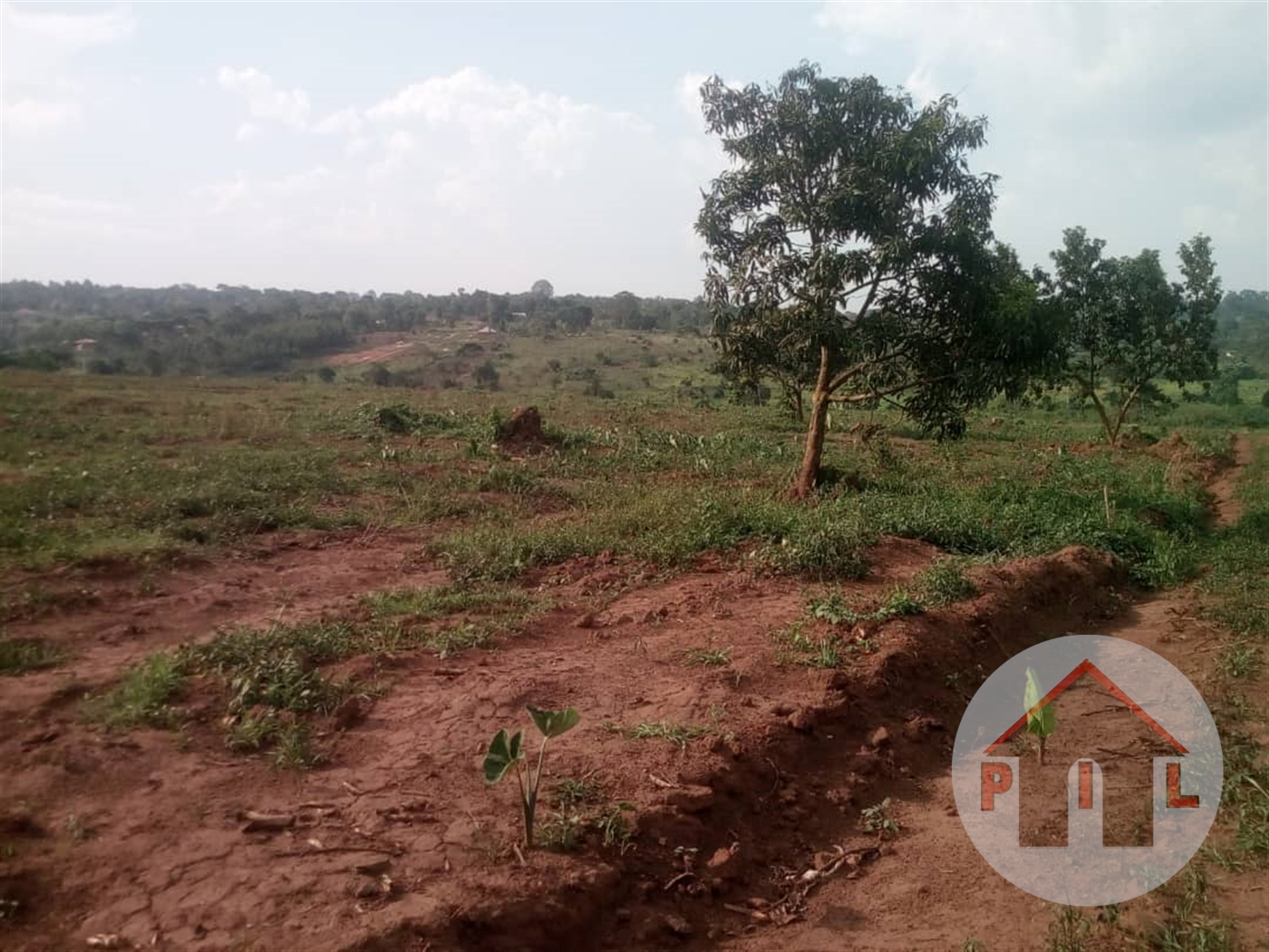 Residential Land for sale in Kavule Kampala