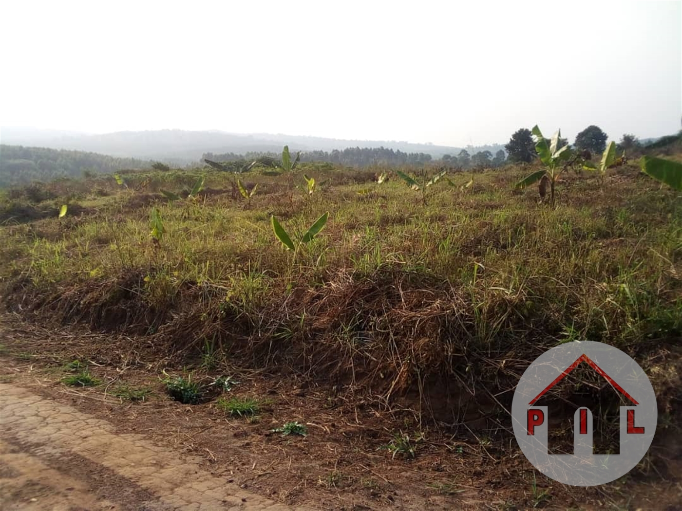 Residential Land for sale in Bujjuuko Mityana