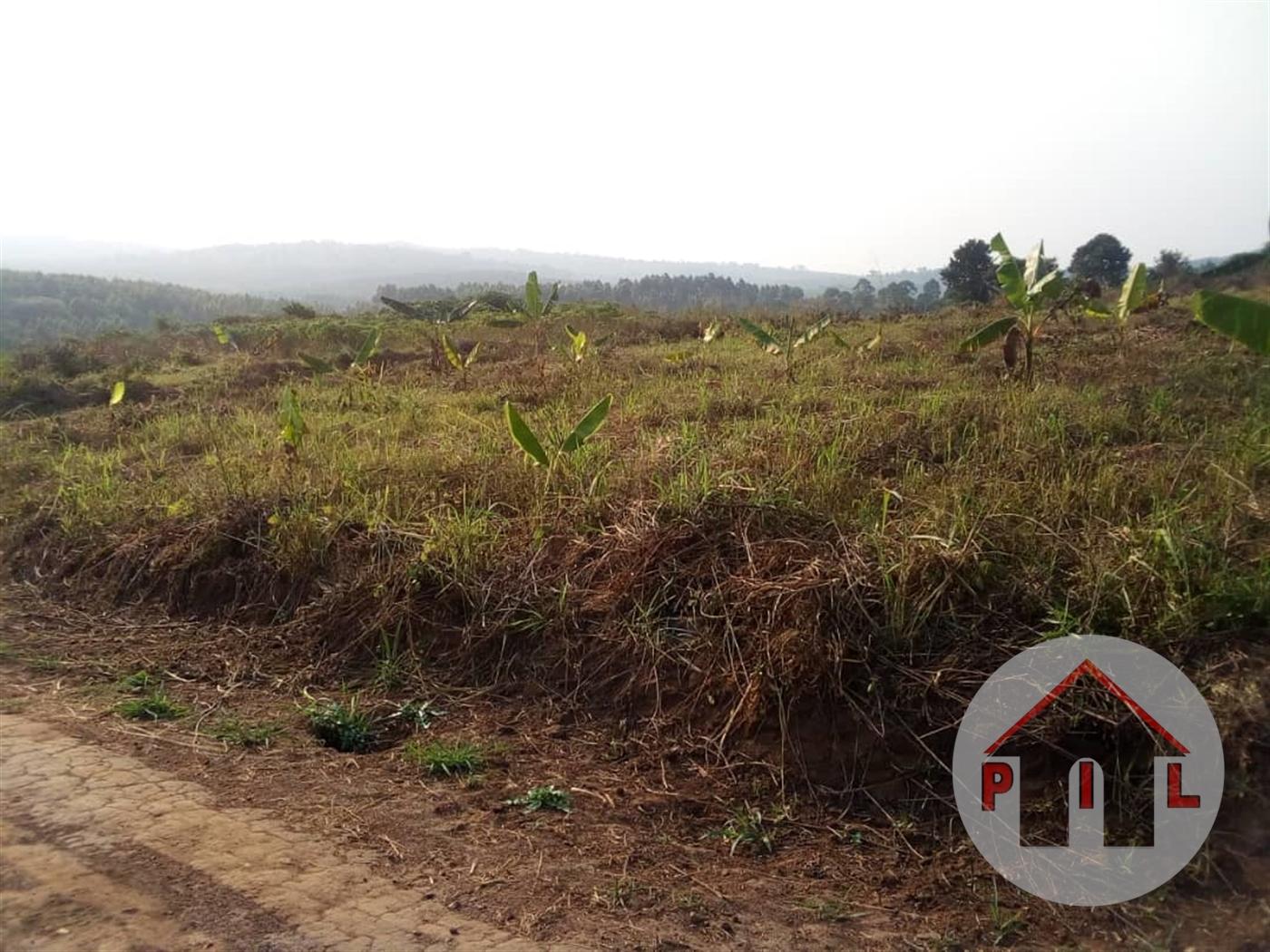 Residential Land for sale in Bujjuuko Mityana