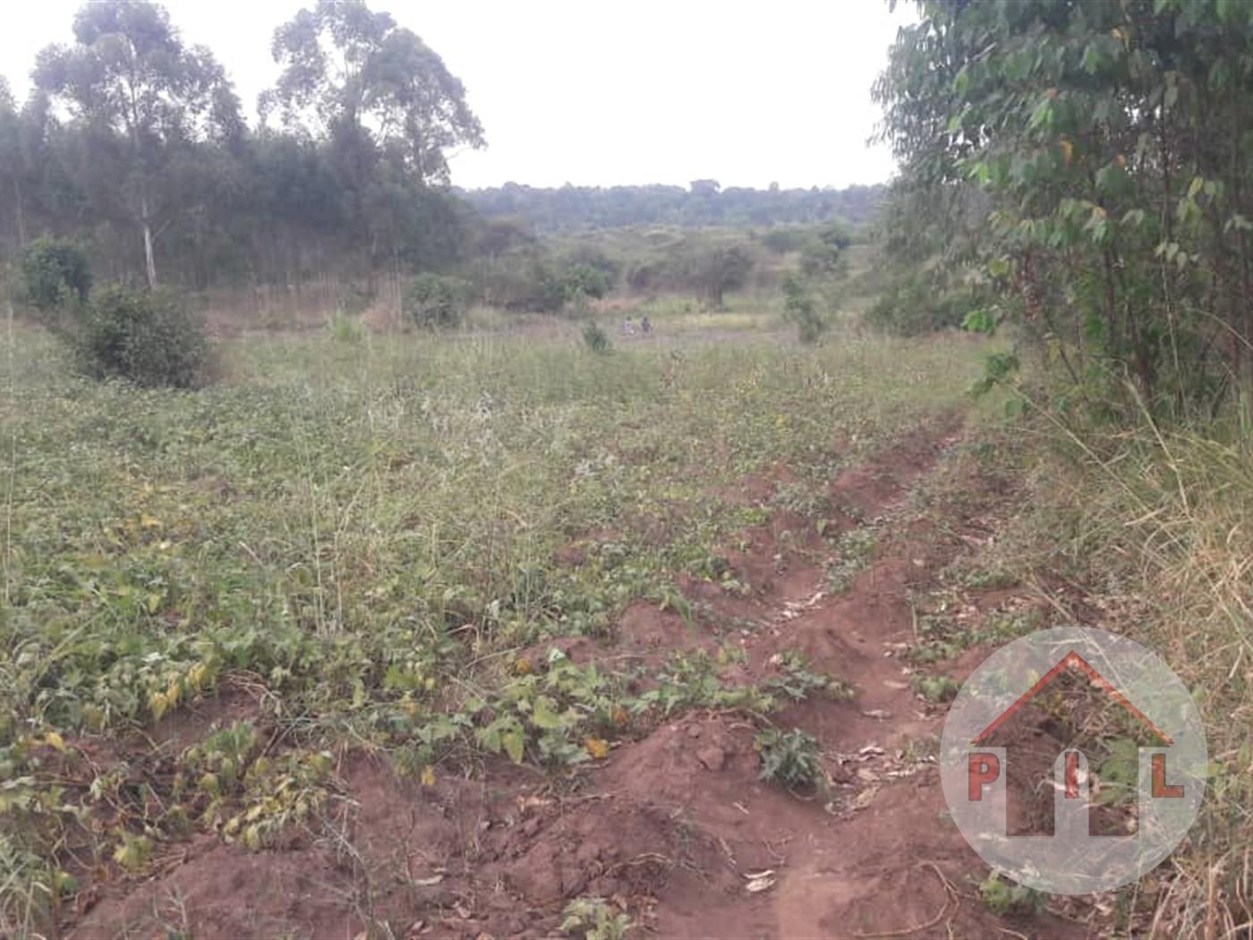 Multi Purpose Land for sale in Vumba Wakiso