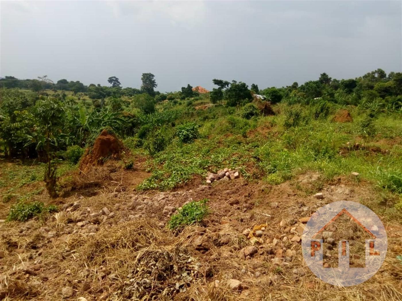 Multi Purpose Land for sale in Garuga Wakiso