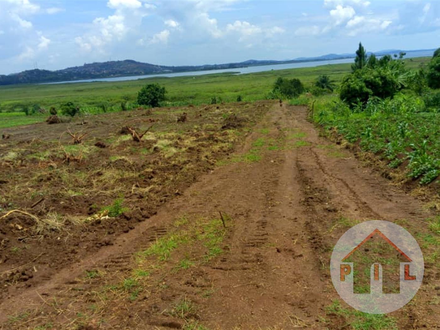 Multi Purpose Land for sale in Bwelenga Bugiri