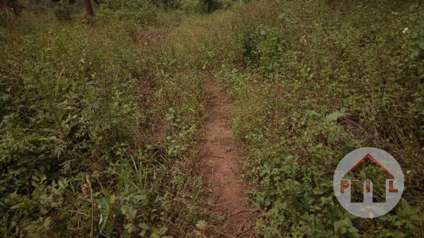 Residential Land for sale in Nakasanjja Wakiso