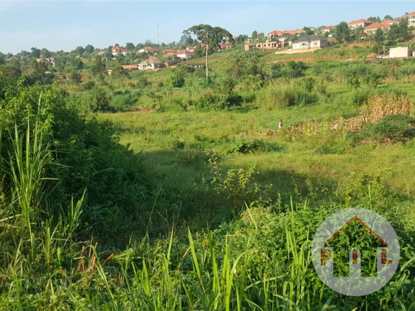 Residential Land for sale in Mpumu Mukono