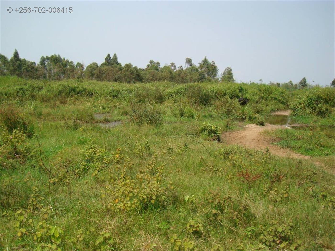 Residential Land for sale in Masaka Masaka