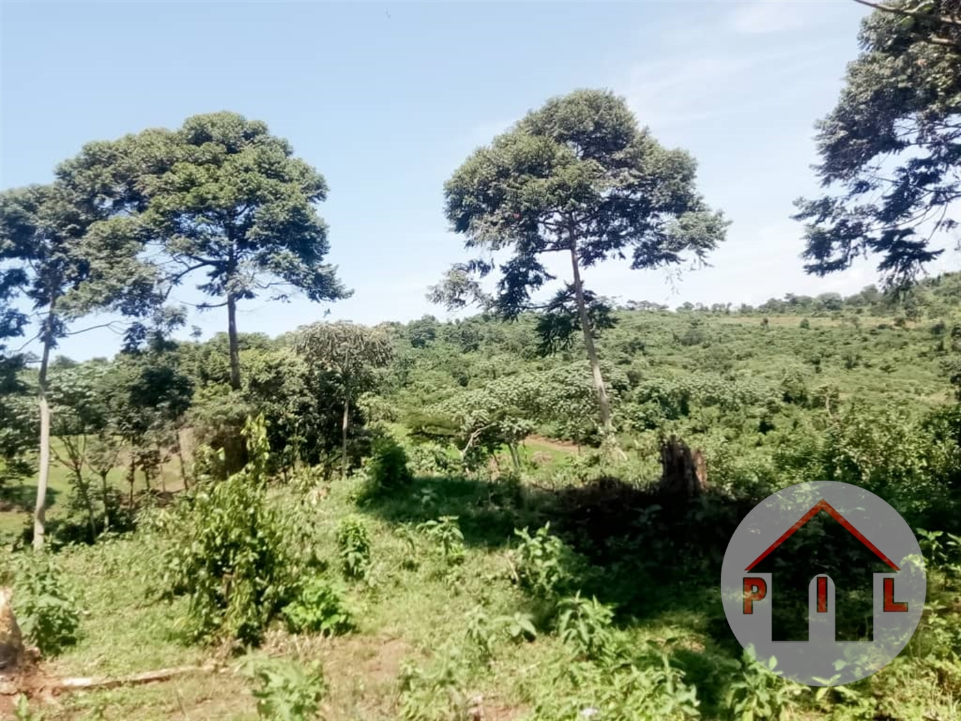Residential Land for sale in Kakuuto Wakiso