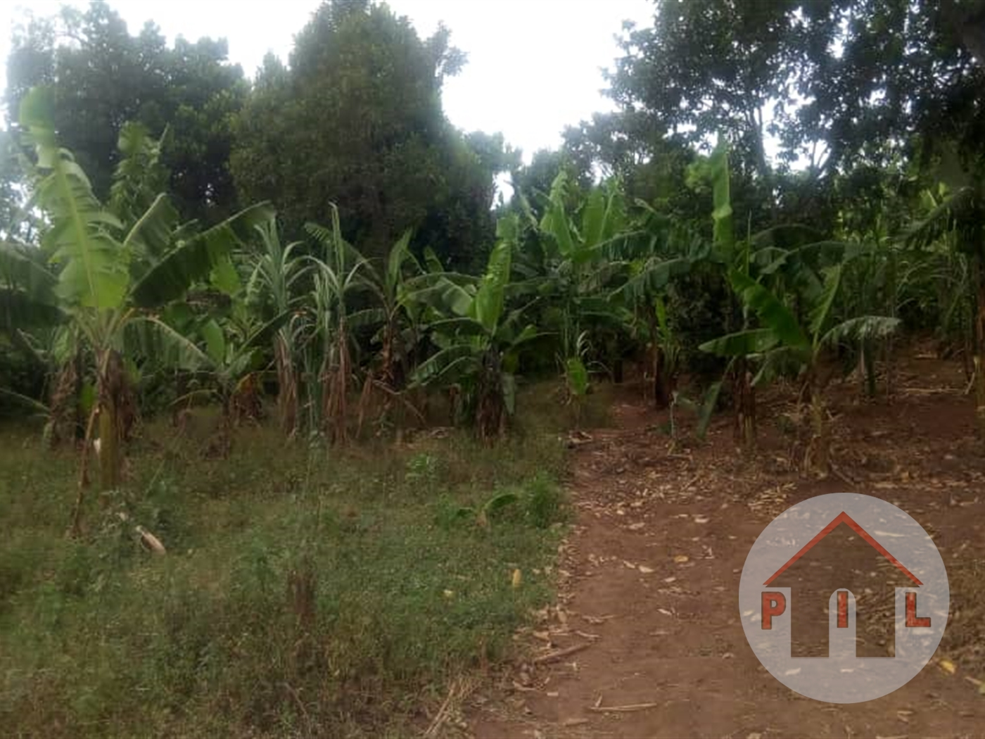 Multi Purpose Land for sale in Natete Kampala