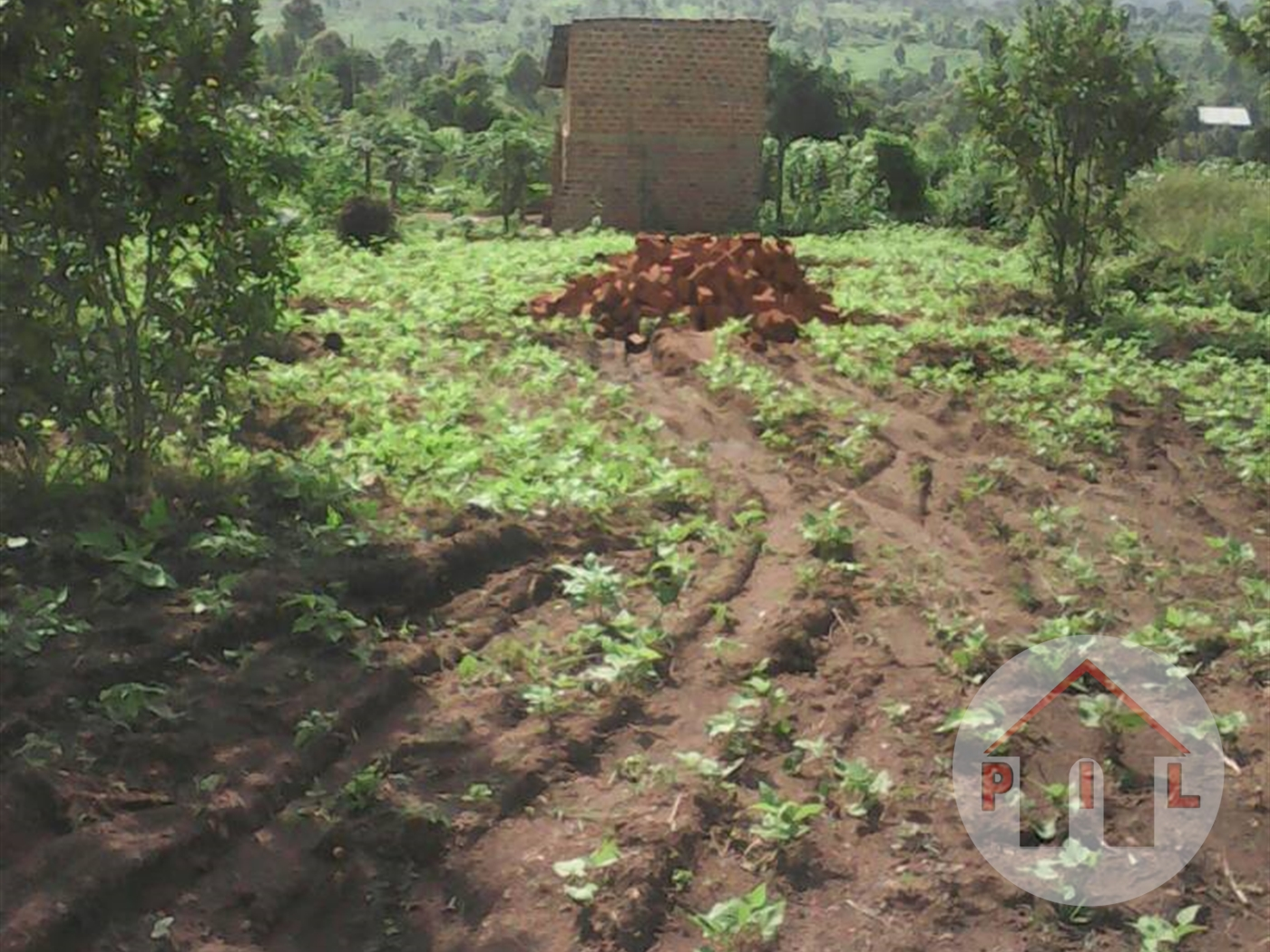 Agricultural Land for sale in Lugo Wakiso