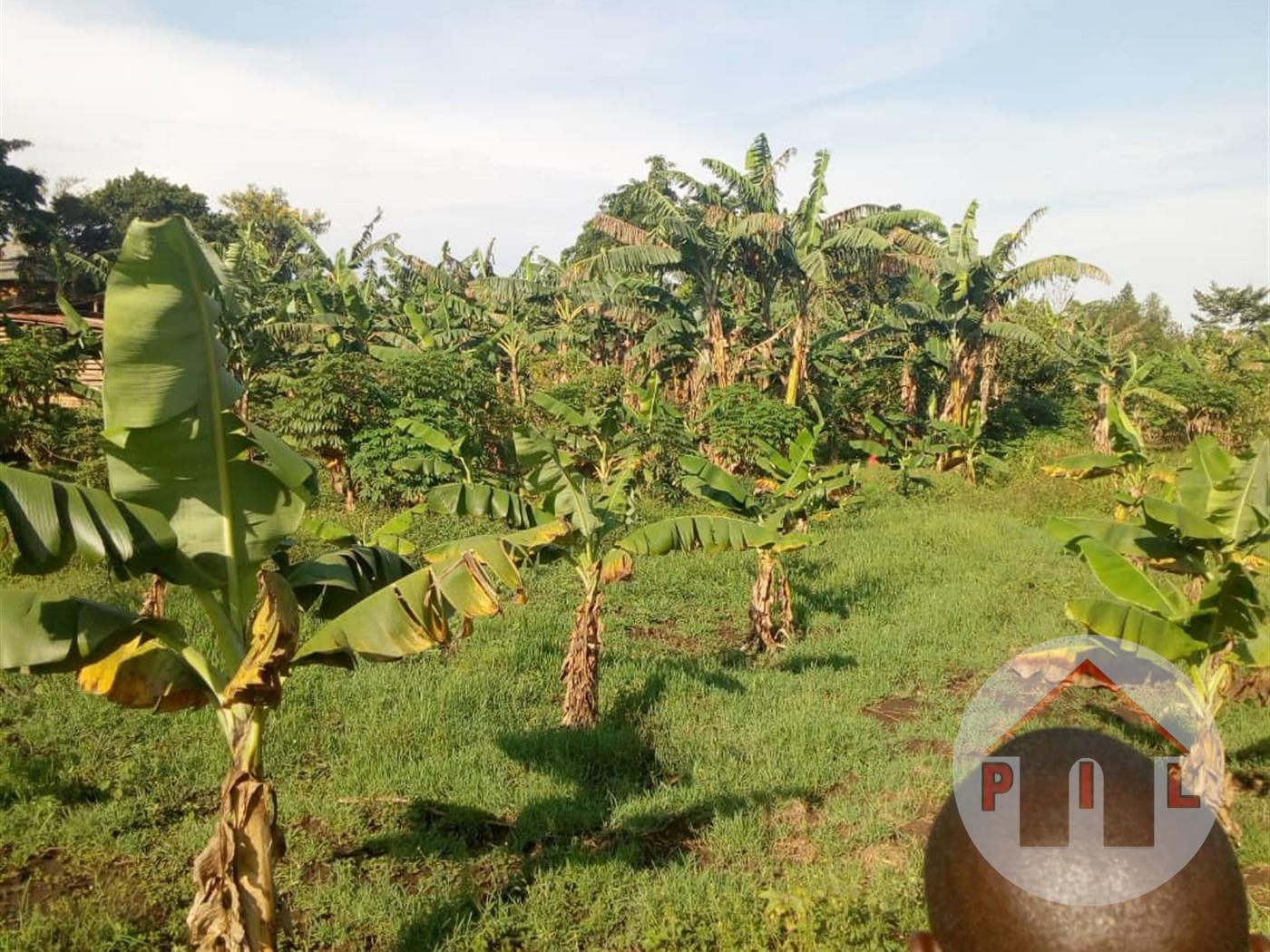 Residential Land for sale in Nakakono Luwero