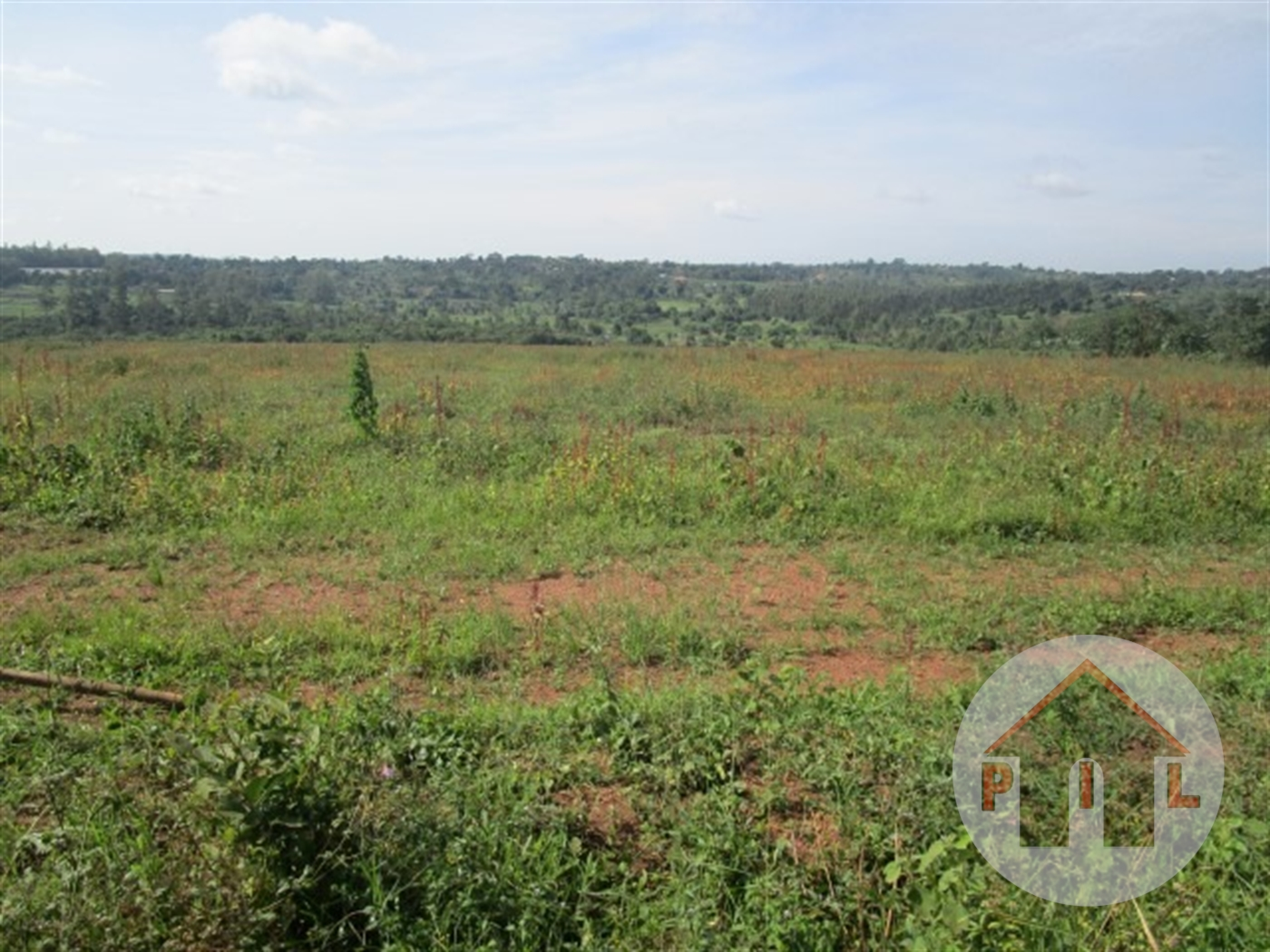 Agricultural Land for sale in Nalongo Luwero