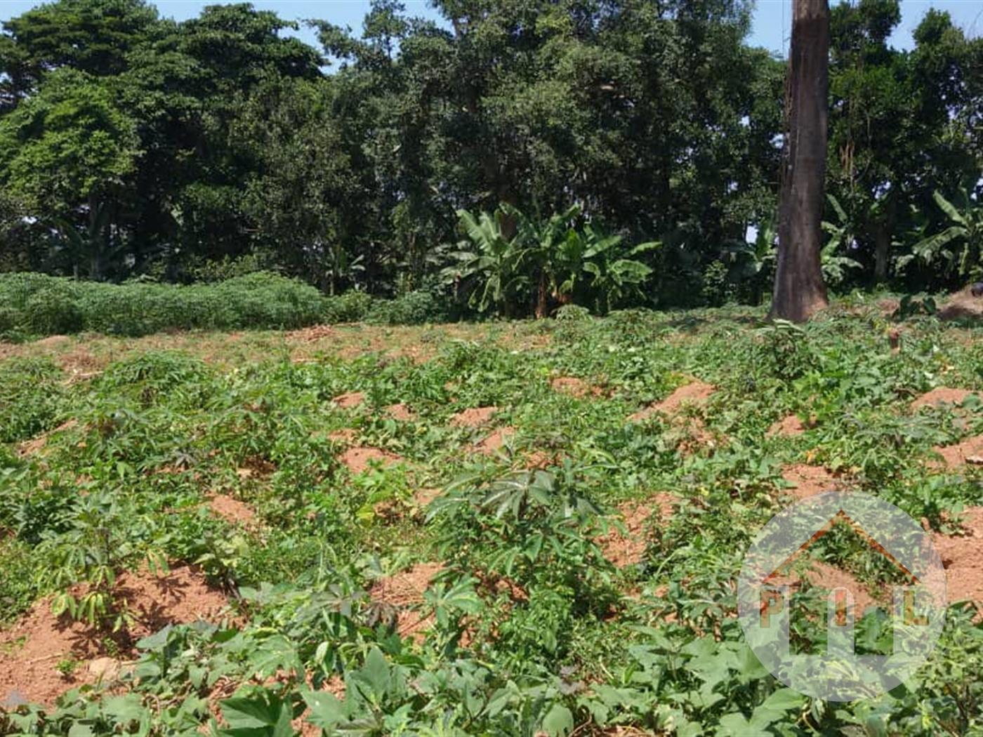 Multi Purpose Land for sale in Wabusaana Luwero