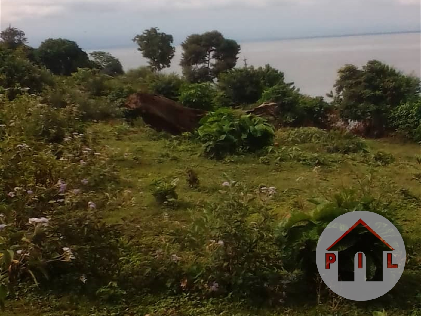 Agricultural Land for sale in Katente Mukono