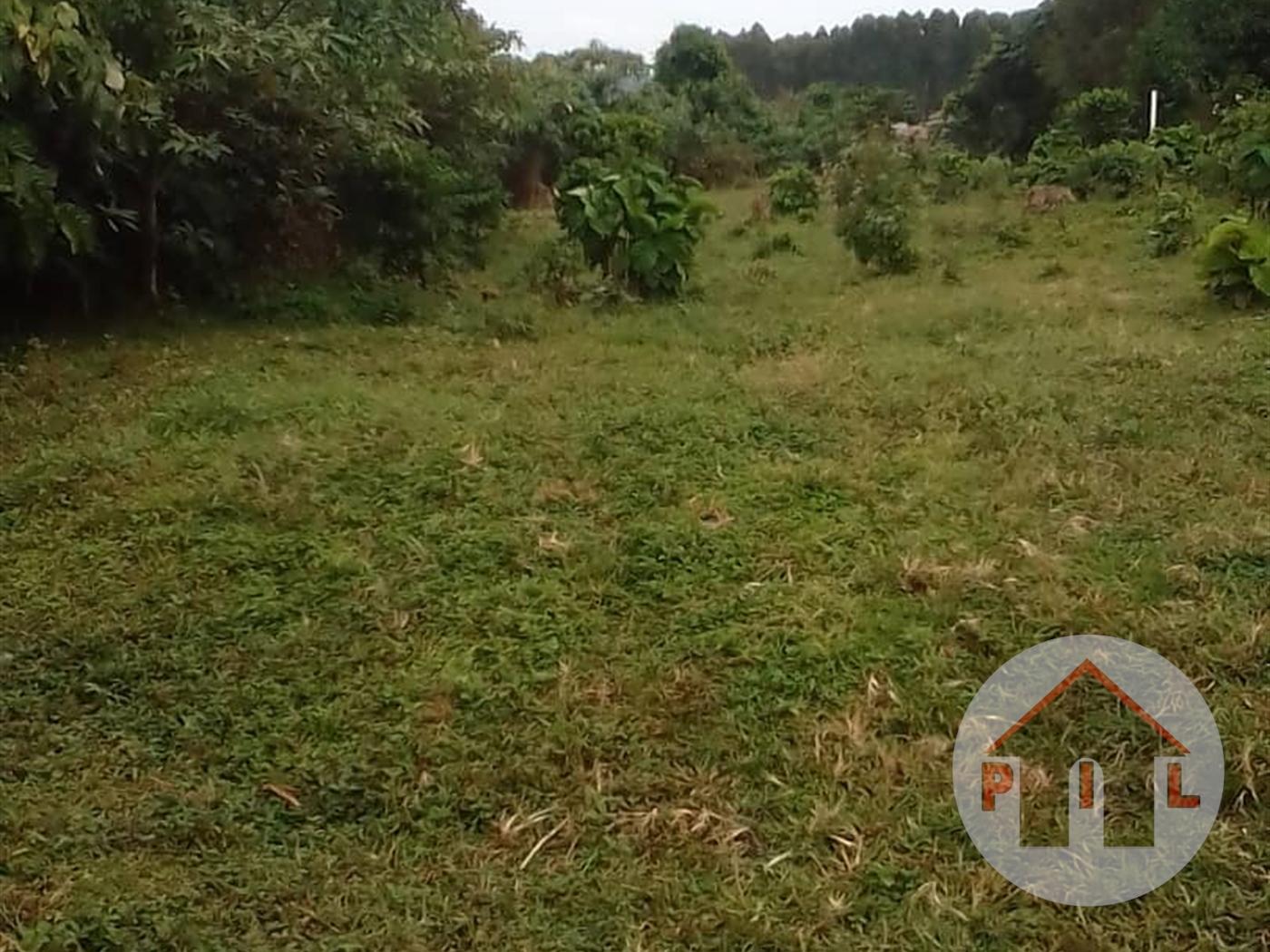 Agricultural Land for sale in Kisigula Bugiri