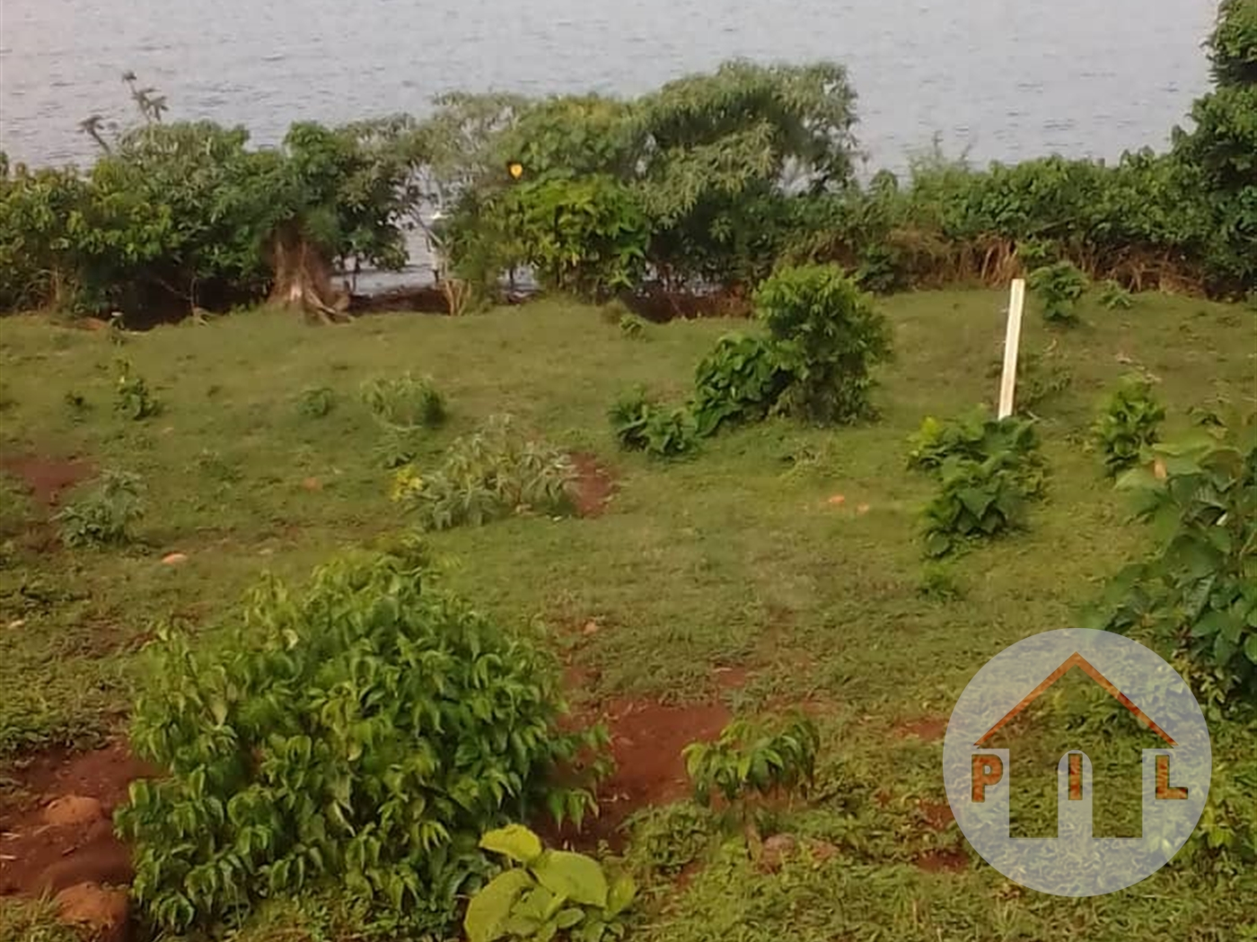 Agricultural Land for sale in Kisigula Bugiri
