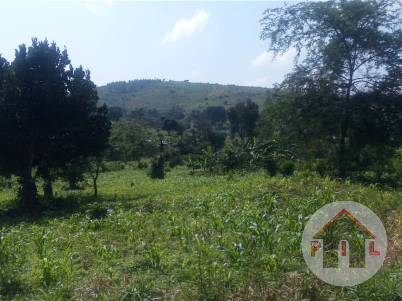 Multi Purpose Land for sale in Zirobwe Luwero