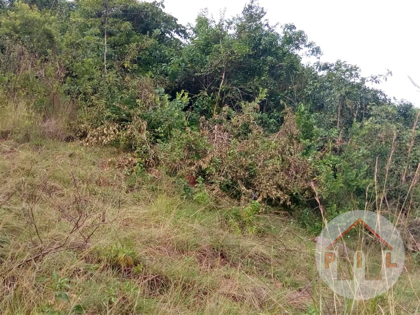 Residential Land for sale in Namulanda Wakiso