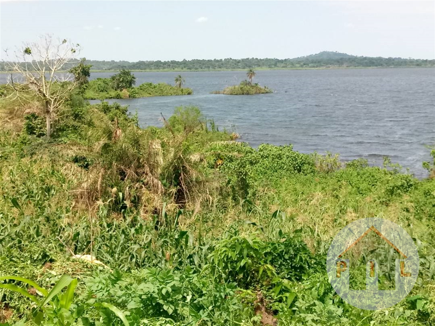 Agricultural Land for sale in Ntenjeru Mukono