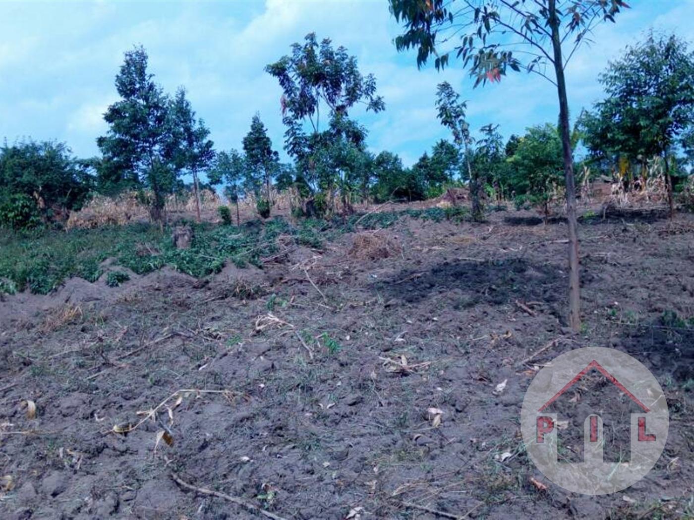 Multi Purpose Land for sale in Webitungulu Luwero