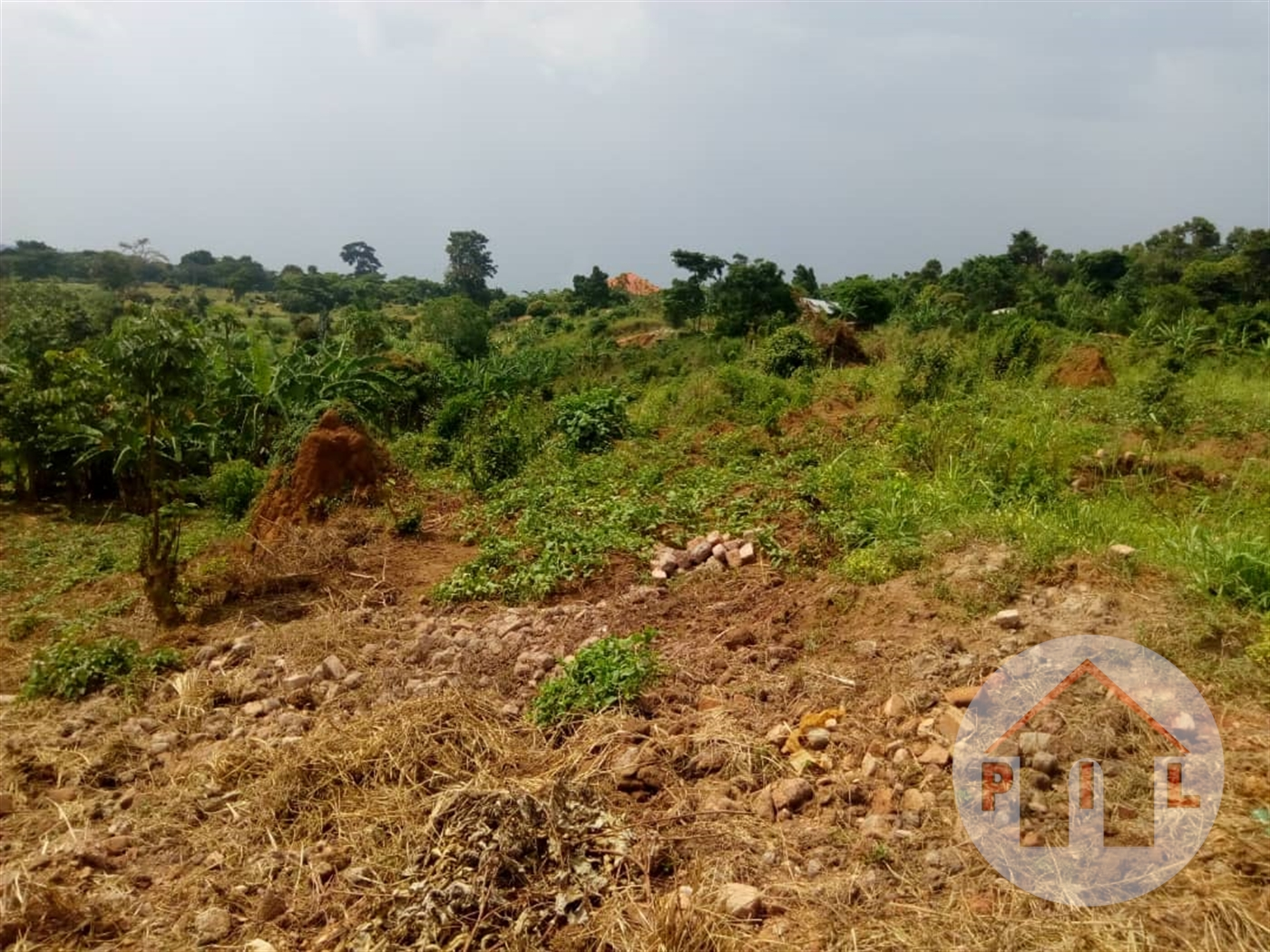 Multi Purpose Land for sale in Bwerenga Wakiso