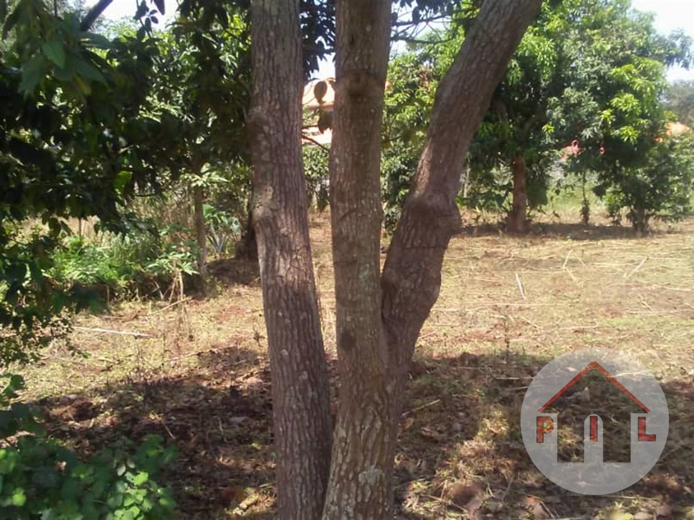 Residential Land for sale in Kavumba Wakiso