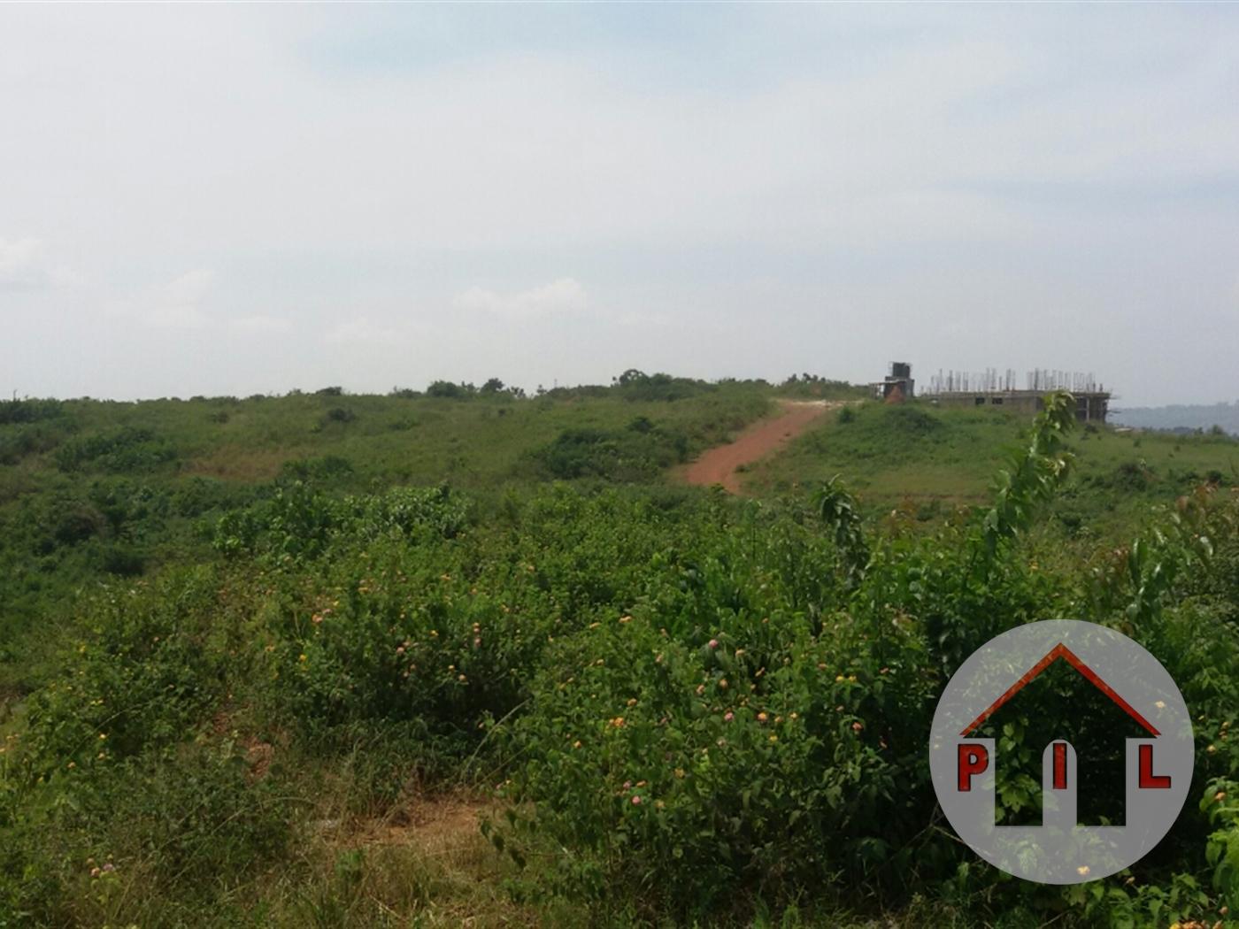 Agricultural Land for sale in Kikyuusa Luwero