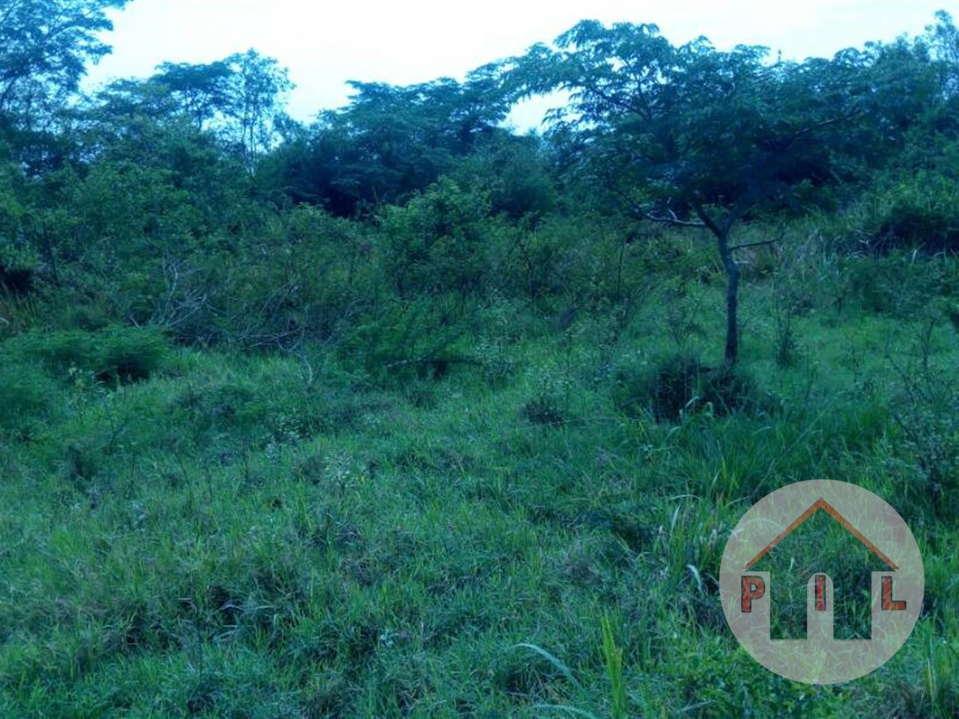 Multi Purpose Land for sale in kasangati Wakiso