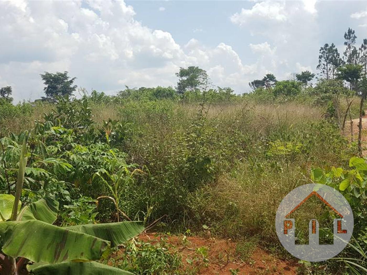 Residential Land for sale in Mugugulu Mubende