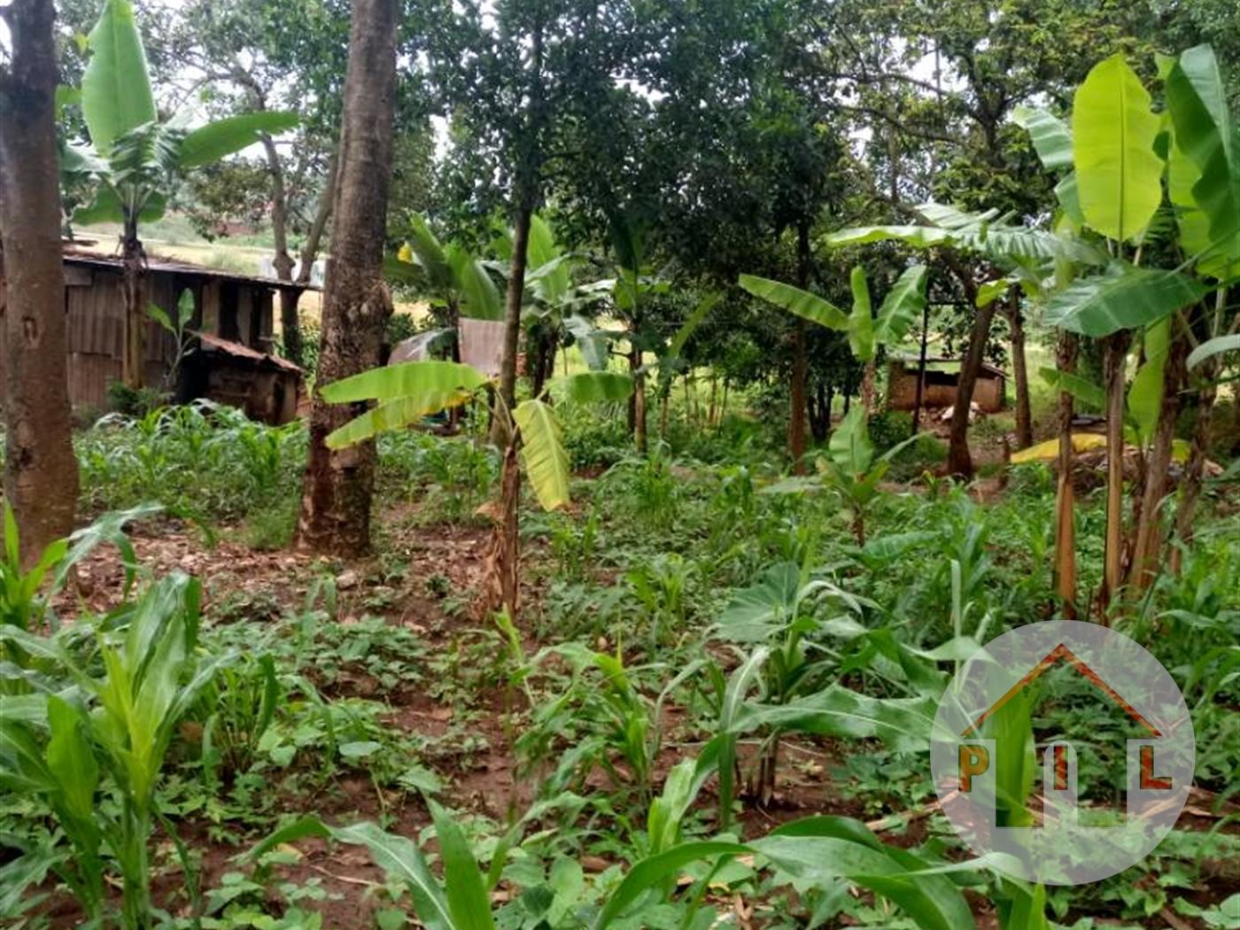 Residential Land for sale in Kazinga Wakiso
