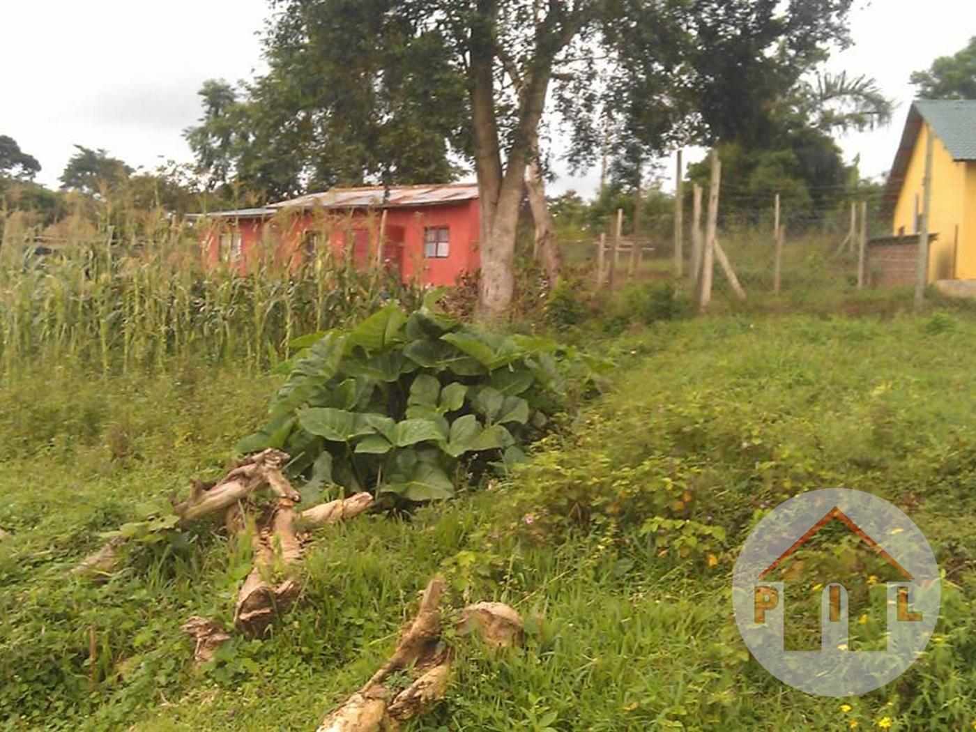 Multi Purpose Land for sale in Buziga Kampala