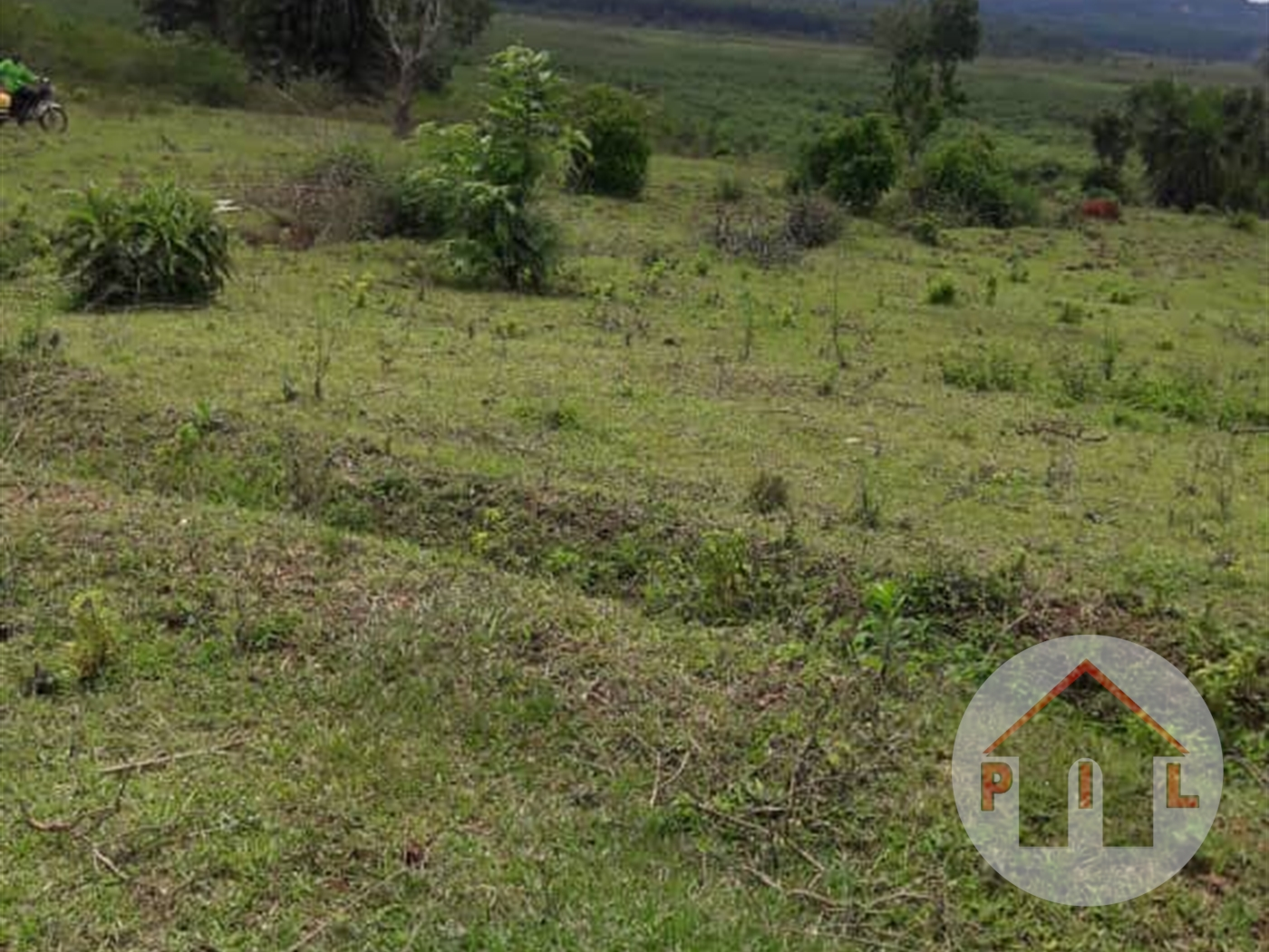 Agricultural Land for sale in Byembogo Kiruhura