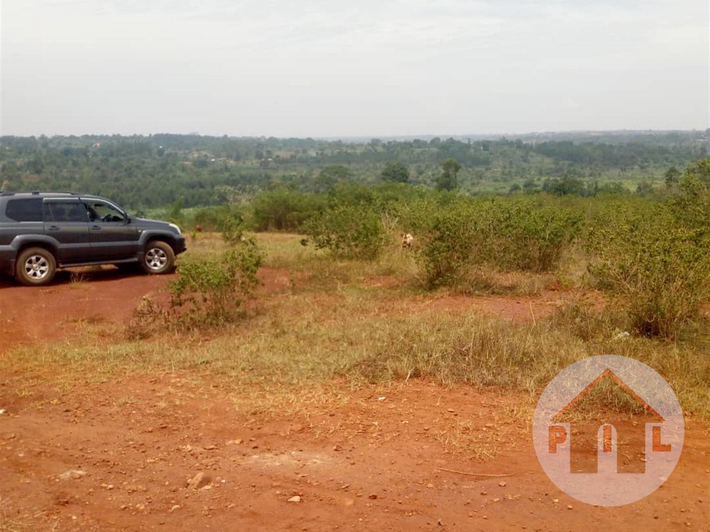 Residential Land for sale in Kayunga Kayunga