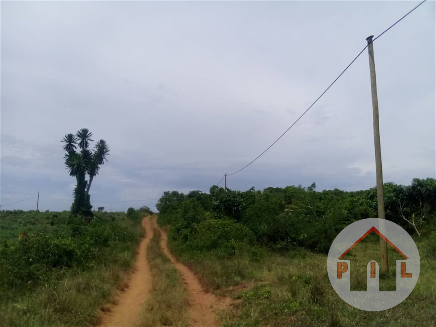 Residential Land for sale in Gombe Kayunga
