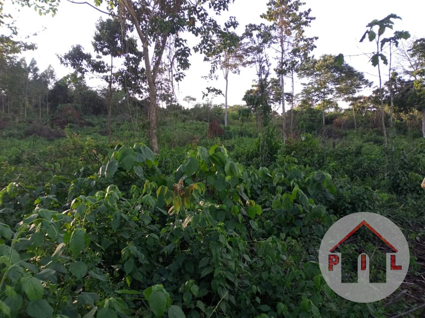 Residential Land for sale in Kalagi Mukono