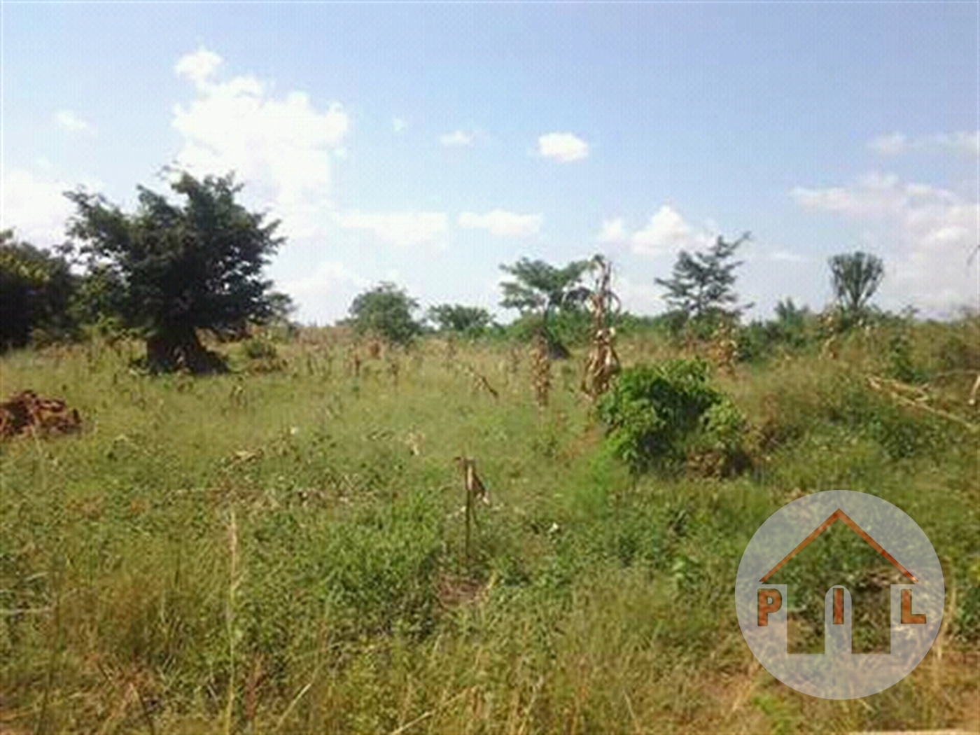Agricultural Land for sale in Ngaju Luwero