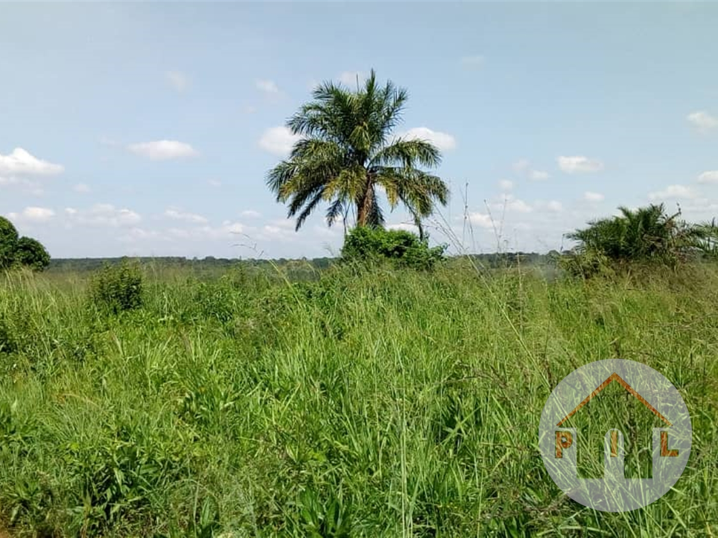Agricultural Land for sale in Wobulenzi Luwero