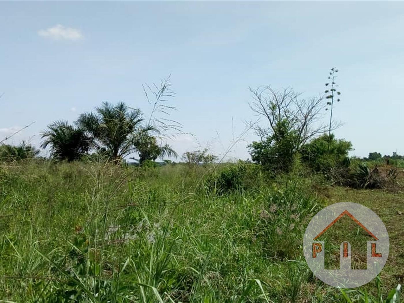 Agricultural Land for sale in Namatambi Nakasongola