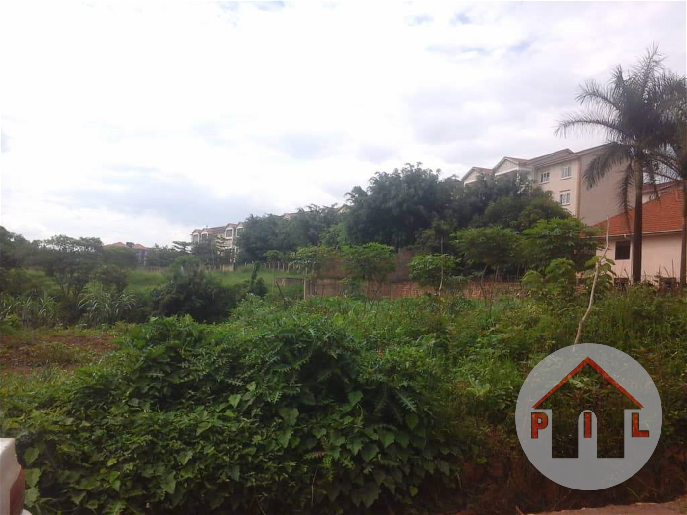 Agricultural Land for sale in Semuto Nakaseke