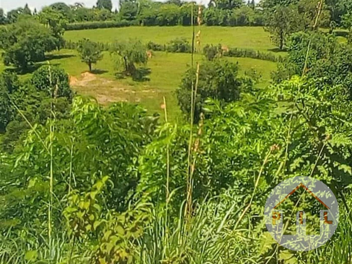 Multi Purpose Land for sale in Muduuma Mpigi