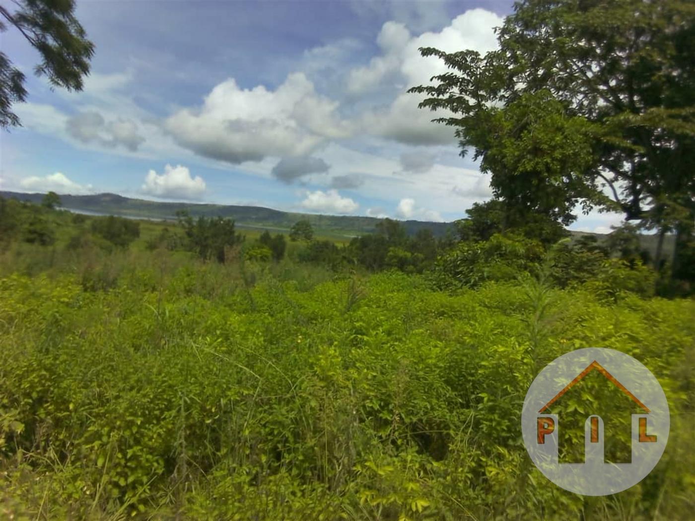 Agricultural Land for sale in Nangunga Bukwa