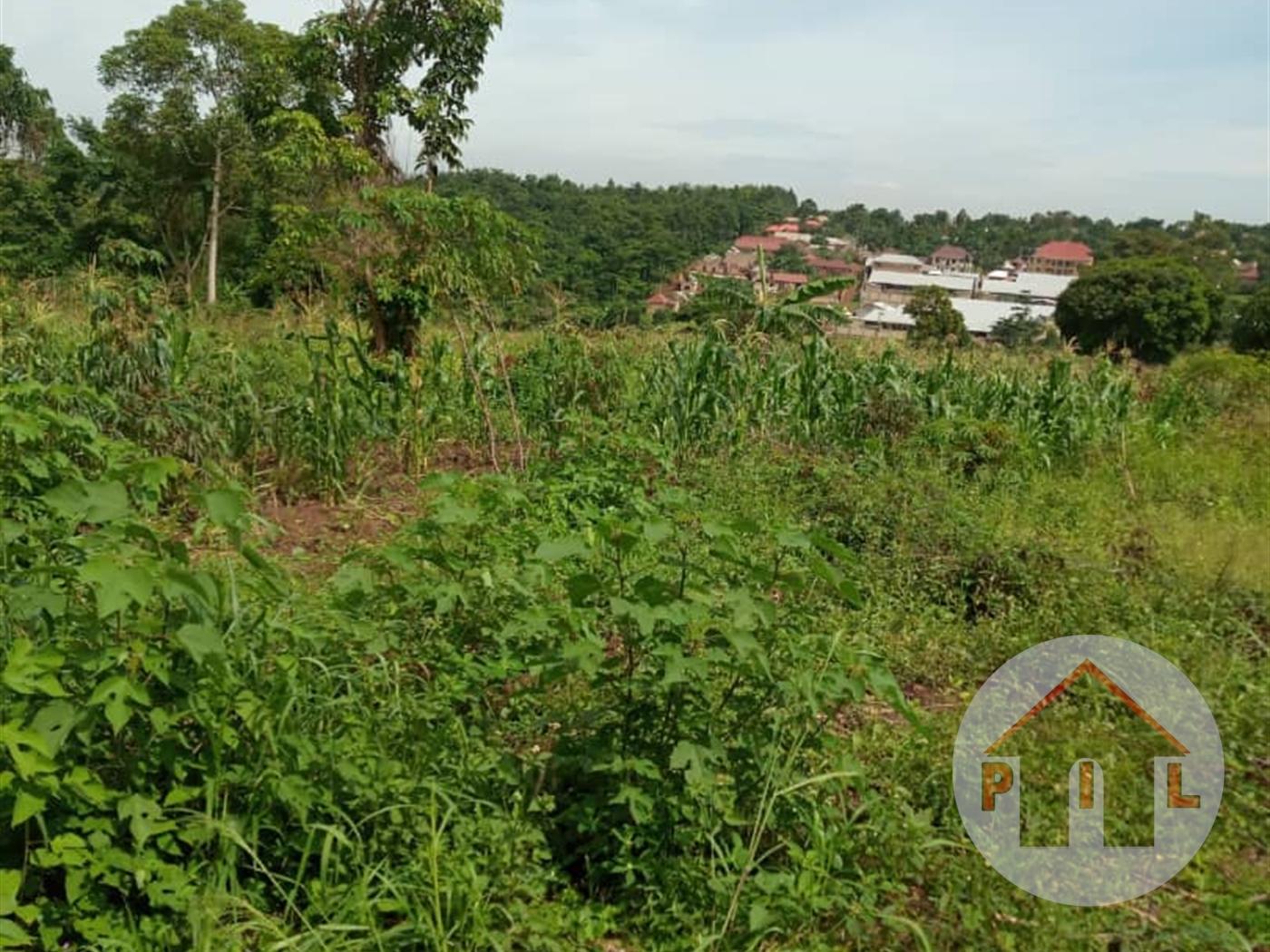 Multi Purpose Land for sale in Zirobwe Wakiso