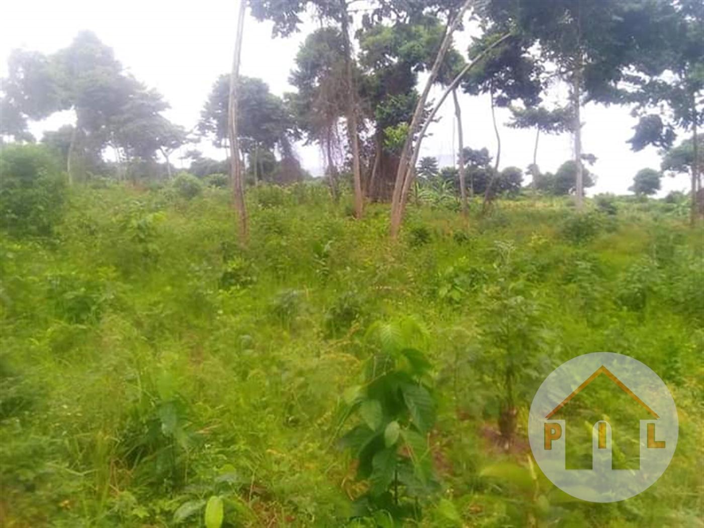 Residential Land for sale in Nkokonjeru Mbarara
